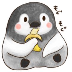 讃える!ペンギン