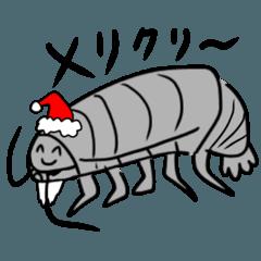 ダイオウグソクムシの冬