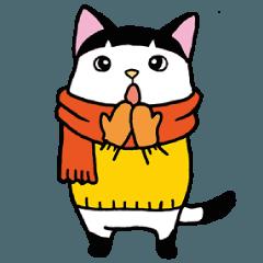 坊ちゃん刈りネコ 3 (ほぼ冬モノ)