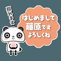 藤原さんちのパンダです