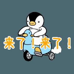 動く!かわいいピンちゃんスタンプ(中国)