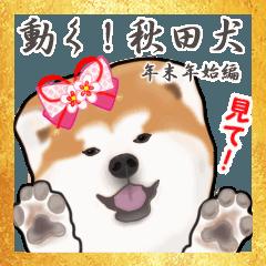 秋田犬の年末年始スタンプ