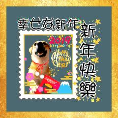 A咪は中国の新年を話す