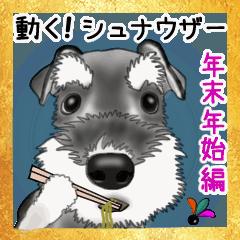 [LINEスタンプ] シュナウザー犬の年末年始スタンプの画像(メイン)