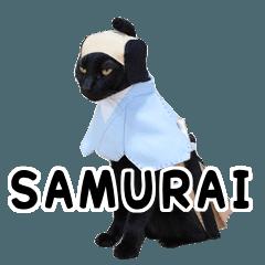 コスチョコ。武士(SAMURAI)バージョン