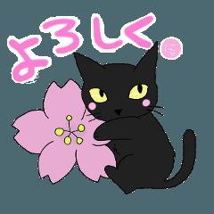 黒猫で会話2