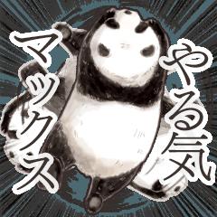 パンダ(大人の図鑑シール)・可愛い動物系