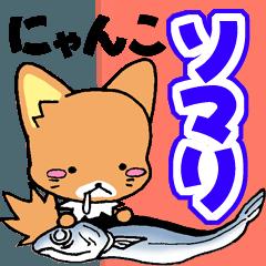 ソマリ猫♡そまりん2