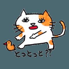 [LINEスタンプ] 九州方言 ・熊本弁猫の肥後たま (1)