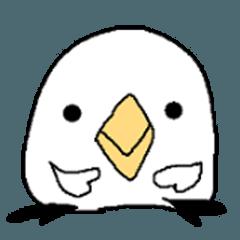 ほぼ顔のトリ