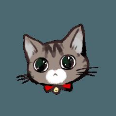 [LINEスタンプ] きじとら猫 ふうちゃんの日常 (1)