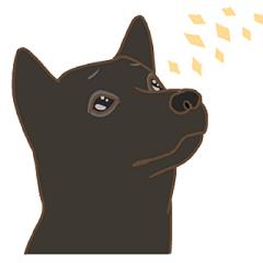 6種類の日本犬スタンプ