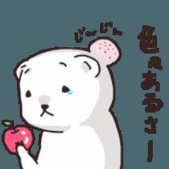 シロクマのクマ太郎さん