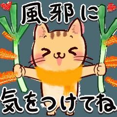 年始→春ねこにゃん♡