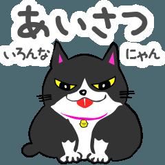 ハートフルアニマル3♡