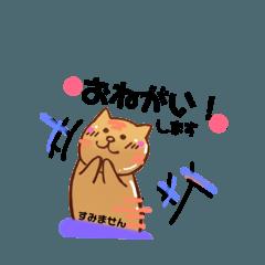 テカリ猫の日常