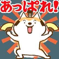 柴ちん5+ 柴犬とお祝い