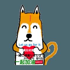 Lucy のゴシップ 1