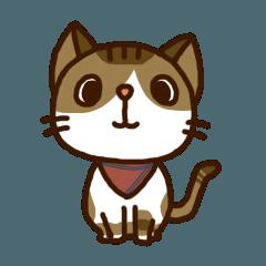 拾い猫のポッキー