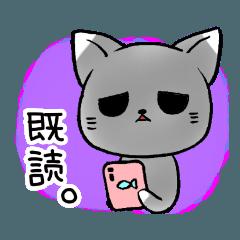 灰猫みーくん