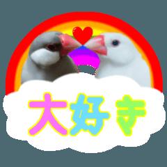 可愛い文鳥スタンプ❤️私の宝物 M&L