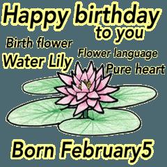 2月、誕生日ごとの誕生花、花言葉。