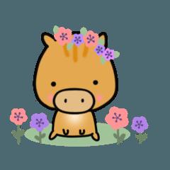 [LINEスタンプ] いのししうりぼう  うりりん  春スタンプ
