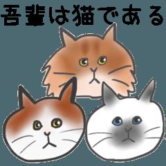 [LINEスタンプ] 吾輩はネコである