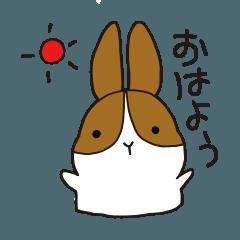 [LINEスタンプ] うさぎたちの日常会話 (1)