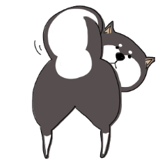 [LINEスタンプ] 可愛い黒柴 (1)