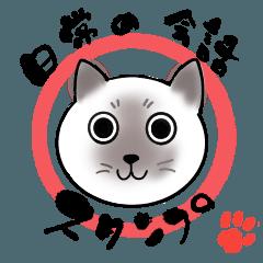 シャム猫の日常に使える会話16選!