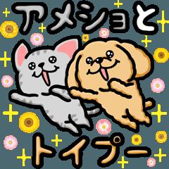 [LINEスタンプ] アメショとトイプー (1)