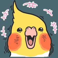 [LINEスタンプ] 顔芸オカメインコ (1)