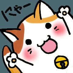 ぽっちゃり猫のころりちゃん