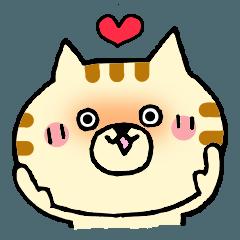 猫便り16 -LOVE篇-