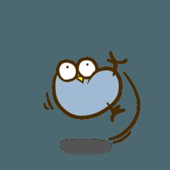 なんでもする鳥 vol.2