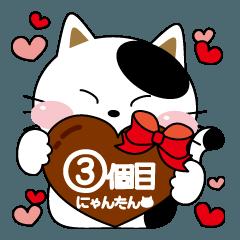 にゃんたんの日常会話3