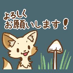 キノコの森の仔【丁寧語】