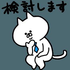 ビジネス白ネコ