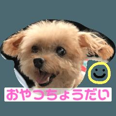 伊藤家の愛犬ぺこちゃんスタンプ