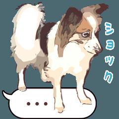 ぜーんぶパピヨン!〜犬のハナ
