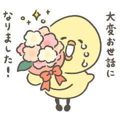 ひよ国民 【春】