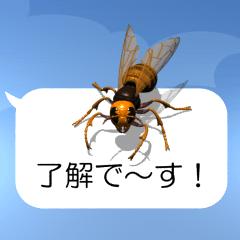 スマホの上のスズメバチ