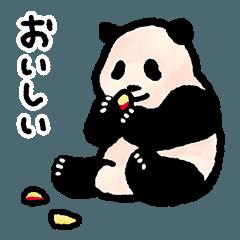 パンダの赤ちゃん(かわいい)
