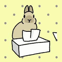 Schinako's アニメでネザーうさぎさん