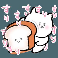 食パンが愛おしいねこ