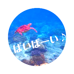 sea world2♡[日本語]