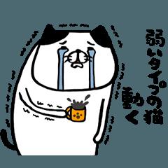 [LINEスタンプ] 弱いタイプの猫 動く (1)