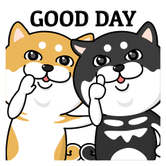 柴犬 GOOD DAY 『2019』