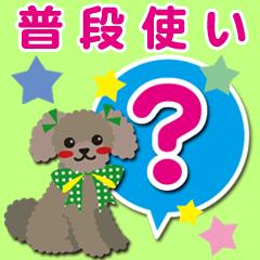 普段使い【トイプードル/ブラウン】